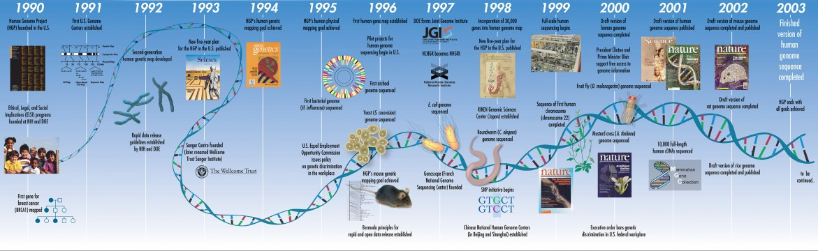 DNA sequence released by Genome Project | StressMarq on