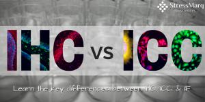 Immunohistochemistry vs Immunocytochemistry vs Immunofluorescence IHC ICC IF