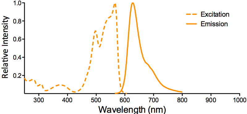 PE-ATTO 594 Fluorophore Conjugate Excitation and Emission Spectra