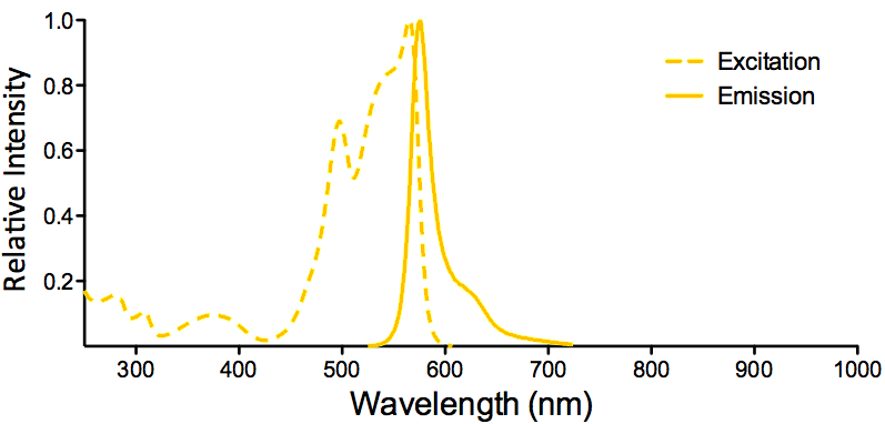 R-PE Fluorophore Excitation and Emission Spectra