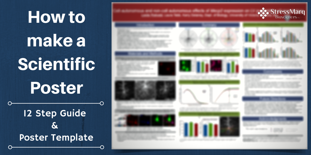 Scientific Posters Powerpoint Template from www.stressmarq.com