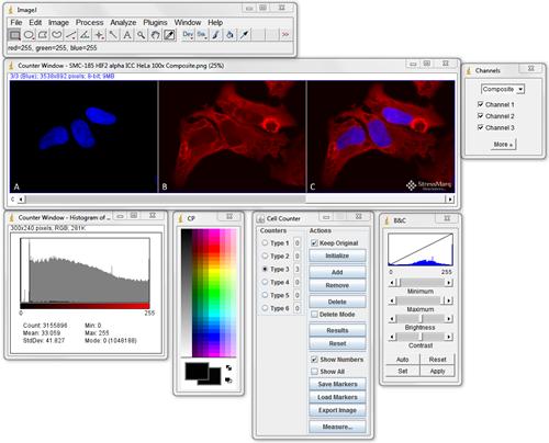 ImageJ-screenshot