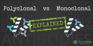 Monoclonal vs Polyclonal Antibodies Explained