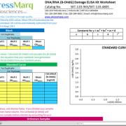 Preview of the Calculations Worksheet for the DNA Damage (8-OHdG) ELISA kit StressXpress - SKT-120