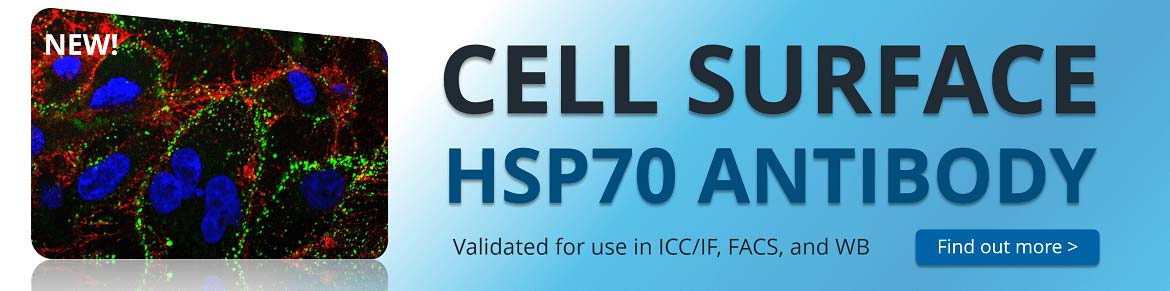 http://www.stressmarq.com/wp-content/uploads/HSP70-Antibody-cell-surface-home-banner-1170-150x150.jpg