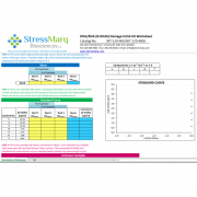 Preview of the Calculations Worksheet for the DNA Damage (8-OHdG) ELISA kit StressXpress - SKT-120