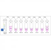 Diagram of the Preparation of Nitrotyrosine Standards for the Nitrotyrosine ELISA Kit StressXpress - SKT-126