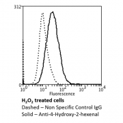 Mouse Anti-4-Hydroxy-2-hexenal Antibody [6F10] used in Flow Cytometry (FCM) on Human Neuroblastoma cells (SH-SY5Y) (SMC-510)