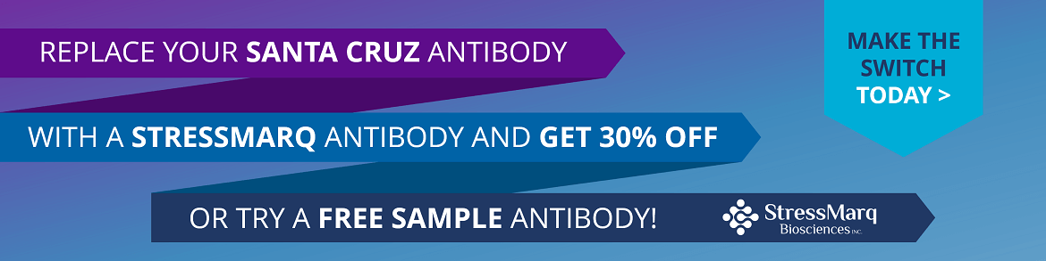 http://www.stressmarq.com/wp-content/uploads/Santa-Cruz-Antibody-Replacement-30-OFF-or-free-sample-homepage-banner-150x150.png